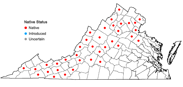 Locations ofLycopodium clavatum L. in Virginia